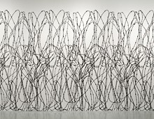 Barbed Wire (Berlin, 1961) 2010